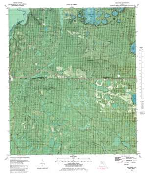Red Head topo map