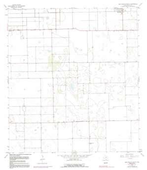 San Perlita South USGS topographic map 26097d6