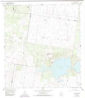 La Sal Vieja USGS topographic map 26097e8