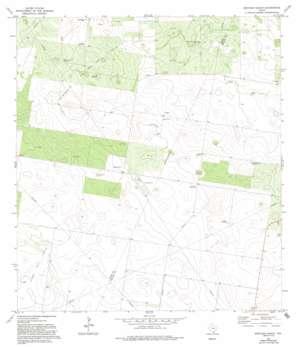 Bentsen Ranch USGS topographic map 26098e4