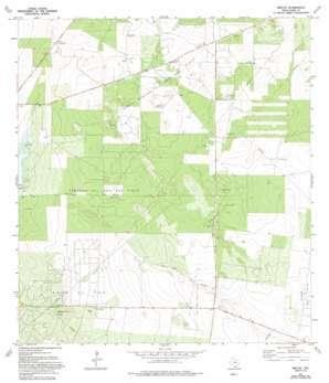 Rincon USGS topographic map 26098e5