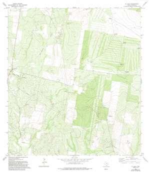 El Sauz USGS topographic map 26098e7