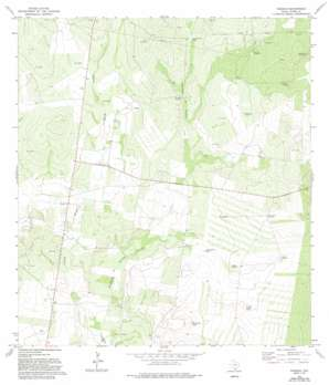 Viboras USGS topographic map 26098f7
