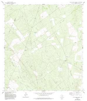 Las Escobas Ranch USGS topographic map 26098f8