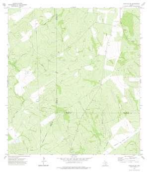 Cuevitas Sw topo map