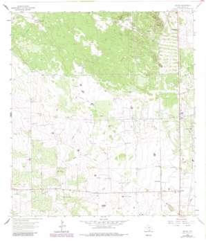 Encino topo map