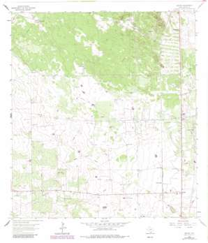 Encino USGS topographic map 26098h2