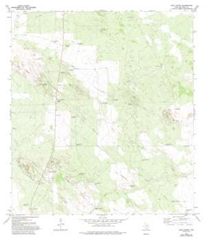 Agua Nueva USGS topographic map 26098h5