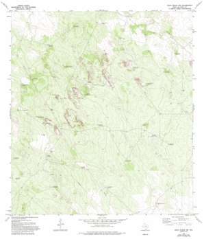 Agua Nueva Nw topo map
