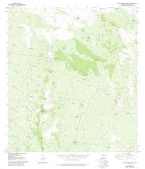 San Antonio Viejo topo map