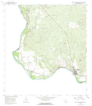 Roma-Los Saenz West USGS topographic map 26099d1