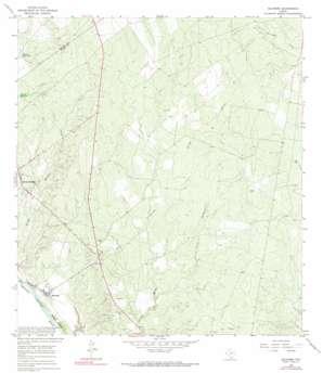 Salineno topo map