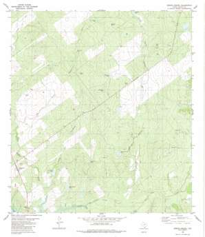 Arroyo Miguel USGS topographic map 26099g1