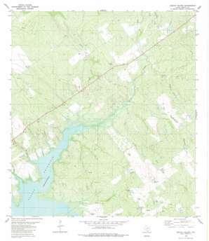 Arroyo Veleno USGS topographic map 26099h2
