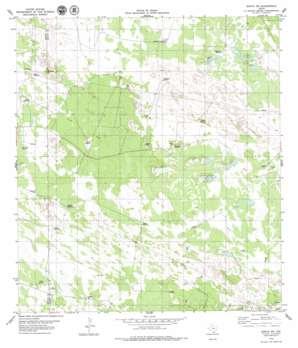 Sarita Sw USGS topographic map 27097a8