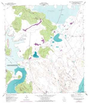 South Bird Island Nw USGS topographic map 27097d4
