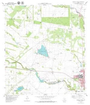 Kingsville West topo map