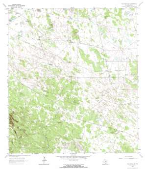 Falfurrias Se USGS topographic map 27098a1