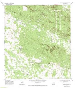 Palomas Ranch Se topo map