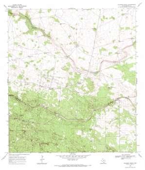 Palomas Ranch topo map