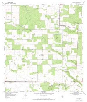 Ramirez USGS topographic map 27098c4
