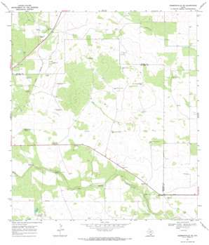 Hebbronville SE USGS topographic map 27098c5