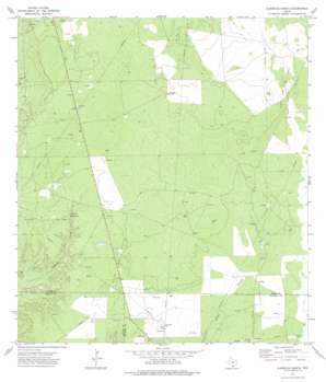 Albercas Ranch USGS topographic map 27098c8