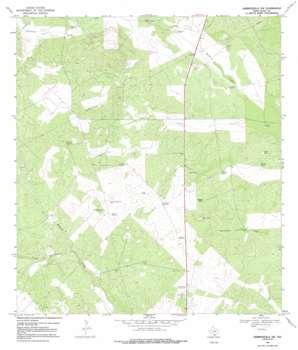 Hebbronville Nw USGS topographic map 27098d6