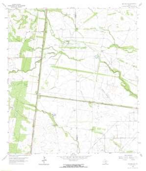 Ben Bolt Se USGS topographic map 27098e1