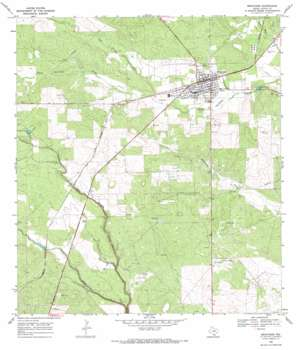 Benavides USGS topographic map 27098e4