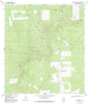Mills Bennett Sw topo map