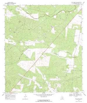 Benavides Ne USGS topographic map 27098f3