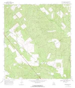 Benavides Nw topo map