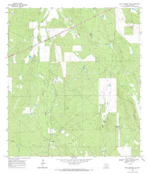 Mills Bennett Nw topo map