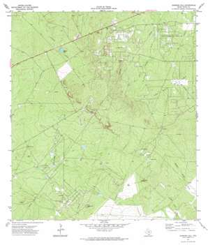 Sarnosa Hill USGS topographic map 27098g6