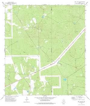 Biel Lake Se topo map