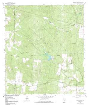 Shaeffer Ranch USGS topographic map 27098h2