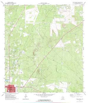 Freer North USGS topographic map 27098h5