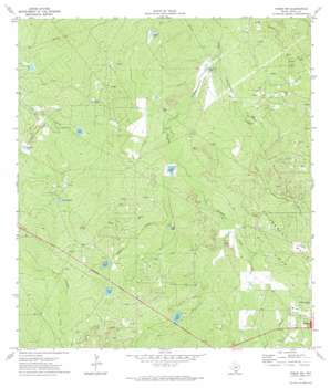 Freer NW USGS topographic map 27098h6