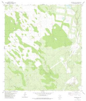 Mogotes Hill USGS topographic map 27099a2