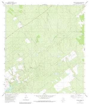 Arroyo Burro topo map