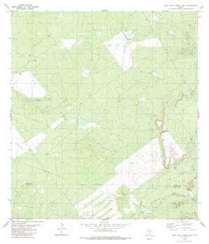 Agua Azul Creek East USGS topographic map 27099c1