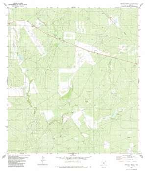 Retama Creek USGS topographic map 27099d2