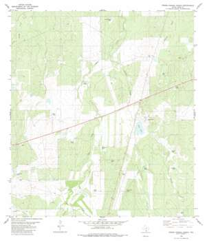 Piedra Parada Ranch USGS topographic map 27099f1