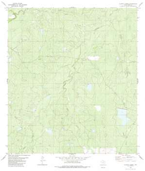 Alamito Creek USGS topographic map 27099g1
