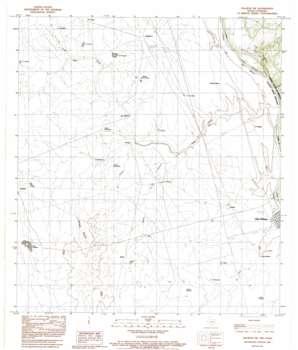Palafox Sw topo map