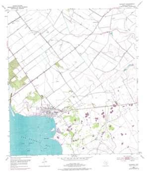 Seadrift topo map