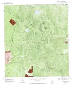 Twin Mott Lake topo map