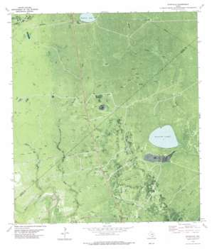 Ryanville topo map