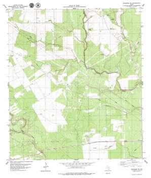 Skidmore Ne USGS topographic map 28097d5